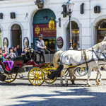 fiaker with white horses in Vienna_283069622