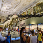 Dinosaur Prehistoric Exhibit At The Museum of Natural History_368590385