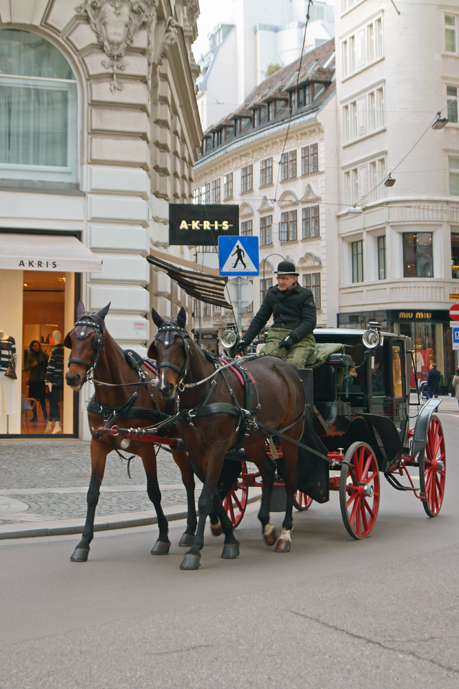 Horse-drawn carriage or Fiaker_378289996