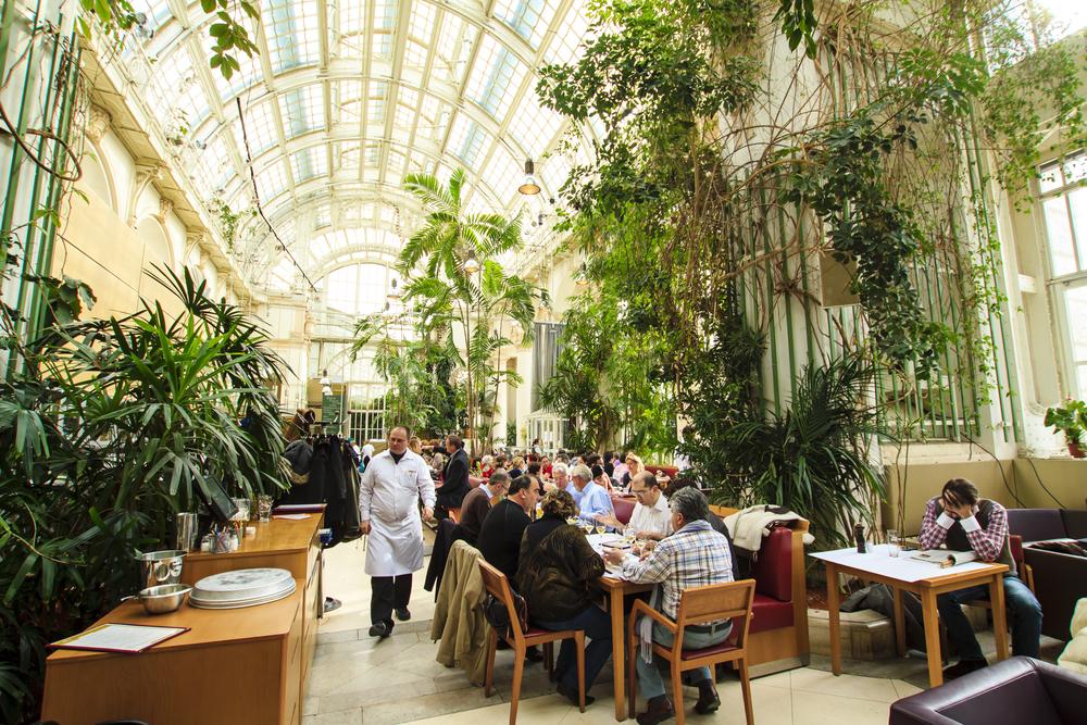 Palmenhouse - Hofburg complex in Vienna_142208359