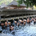 Holy Temple Pool at Pura Tirta Empul Bali_338777285