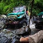 SUV in the tropical jungle_388114255