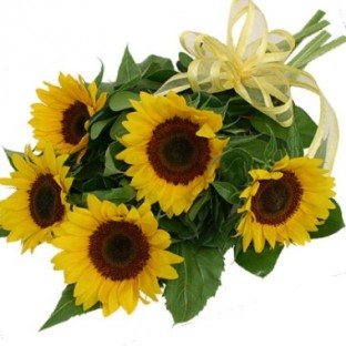 Bouquet de 5 girasoles
