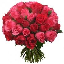 Bouquet de 36 rosas rojas y rosadas