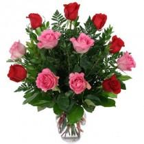 12 rosas rojas y rosadas. Florero incluido.