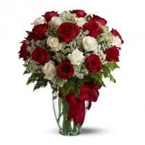 24 rosas rojas y blancas. Florero incluido