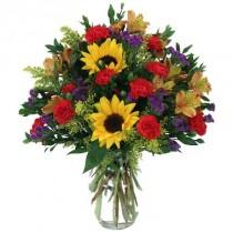 Flores iluminadas por el sol. Incluye Florero