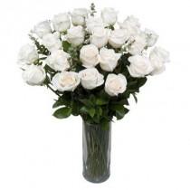 24 rosas blancas. Florero incluido