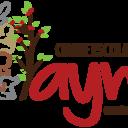 Logotipo ayni fundo transparente