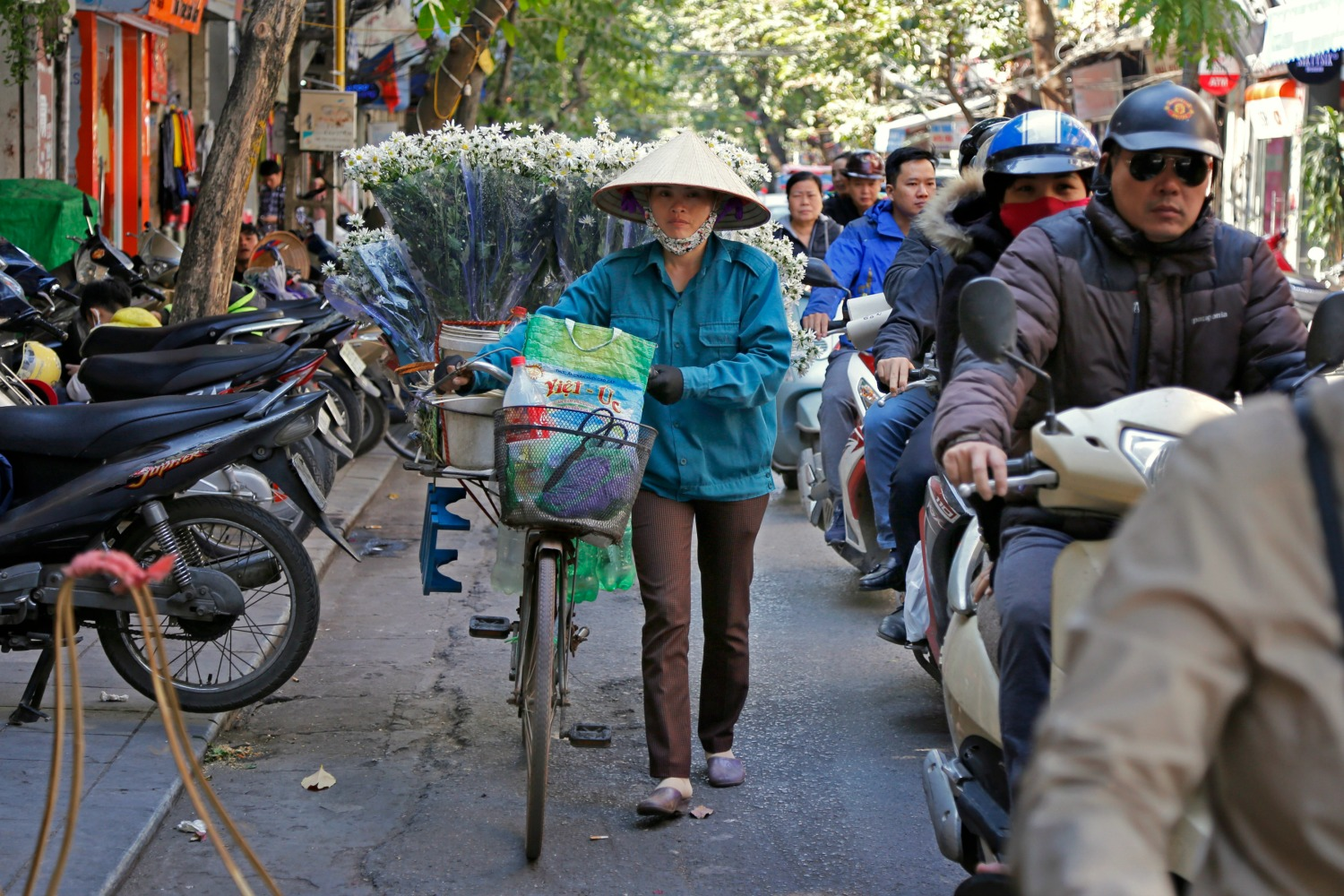 Can 'Citizen Science' Save Vietnam's Environment From