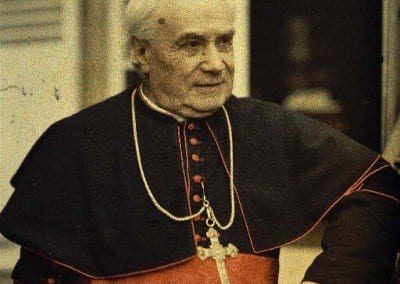 Monseigneur Luçon.