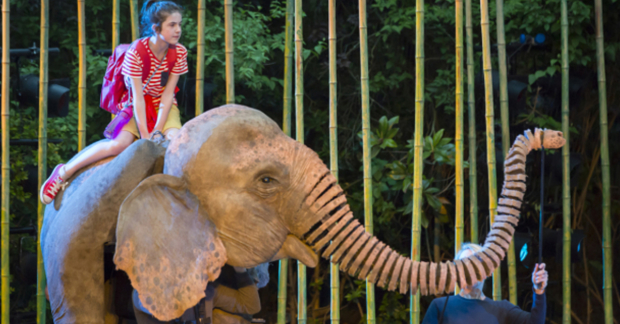 Ava Potter as Lilly with Oona the elephant in  Running Wild