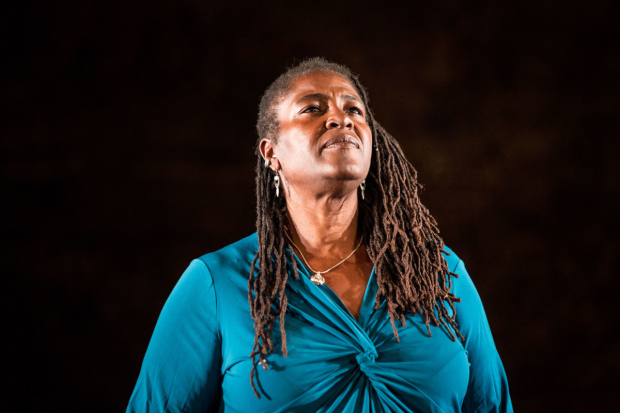 Sharon D Clarke in Pigs and Dogs at the Royal Court