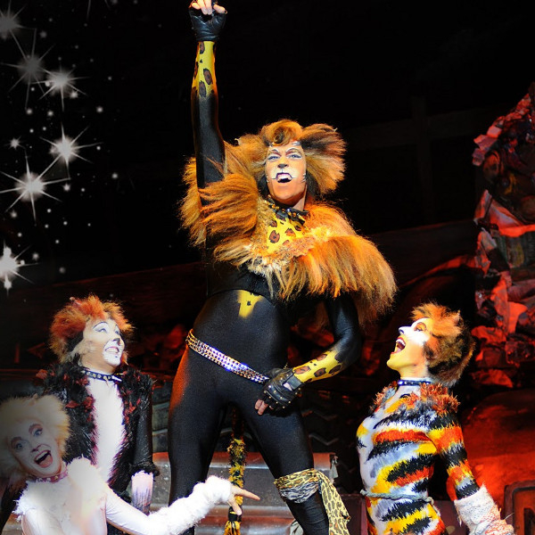 Oliver Savile as Rum Tum Tugger in the 2013 UK tour