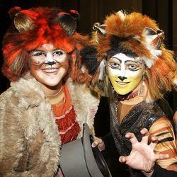 Stage Experience present Cats