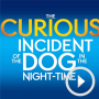 WhatsOnStage Q&A with the cast of The Curious Incident of the Dog in the Night-Time