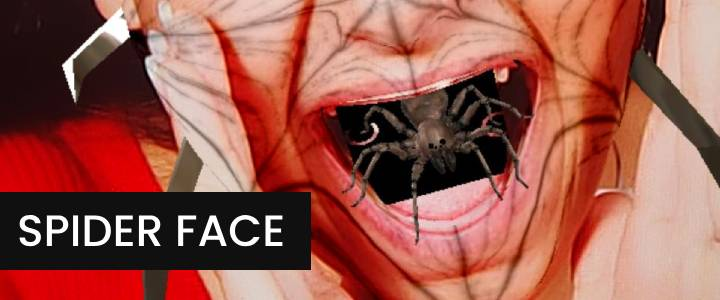 Creepy Animated Spider Face Instagram Filter