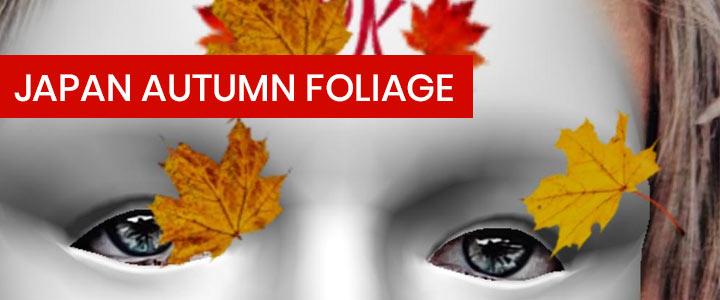 Japan Autumn Foliage Instagram Filter