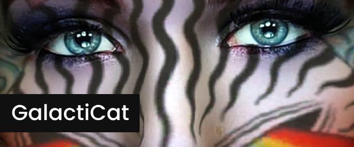 Galactic Cat AR 3D Makeup Instagram Filter