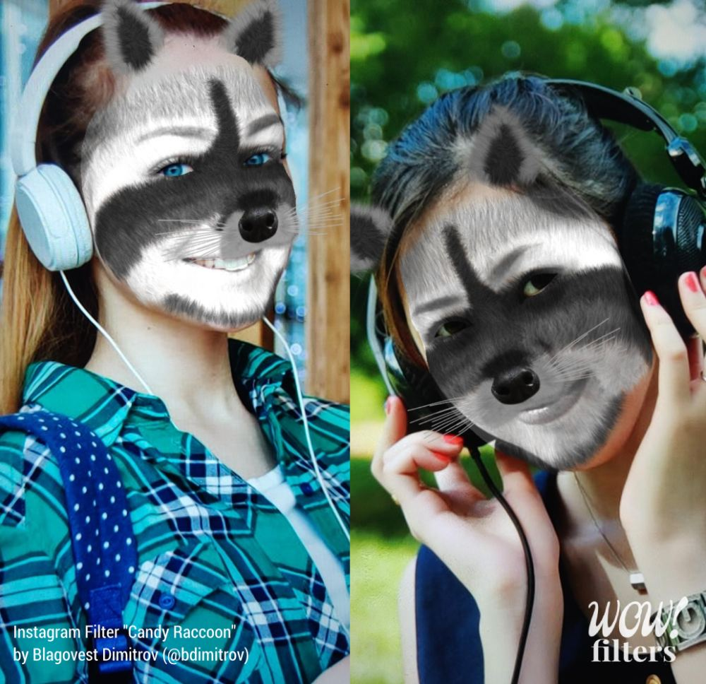 Cute raccoon AR face mask