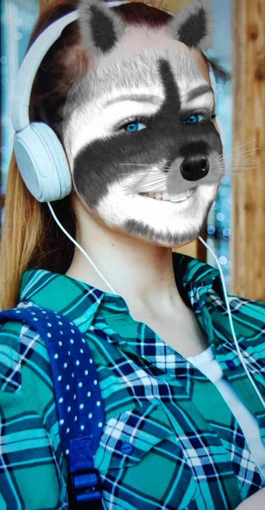 Furry Raccoon Face Mask Instagram Filter