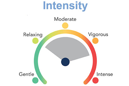 Infinity Massage Chair Prelude Intensity