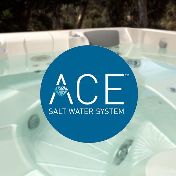 ACE® Salt Water Sanitizing System Product Image