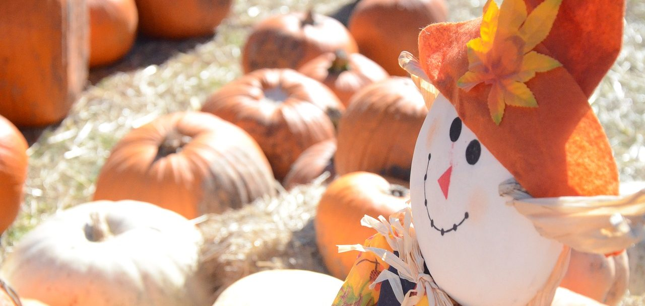 How to Have a Fall Festival in Your Backyard Pool