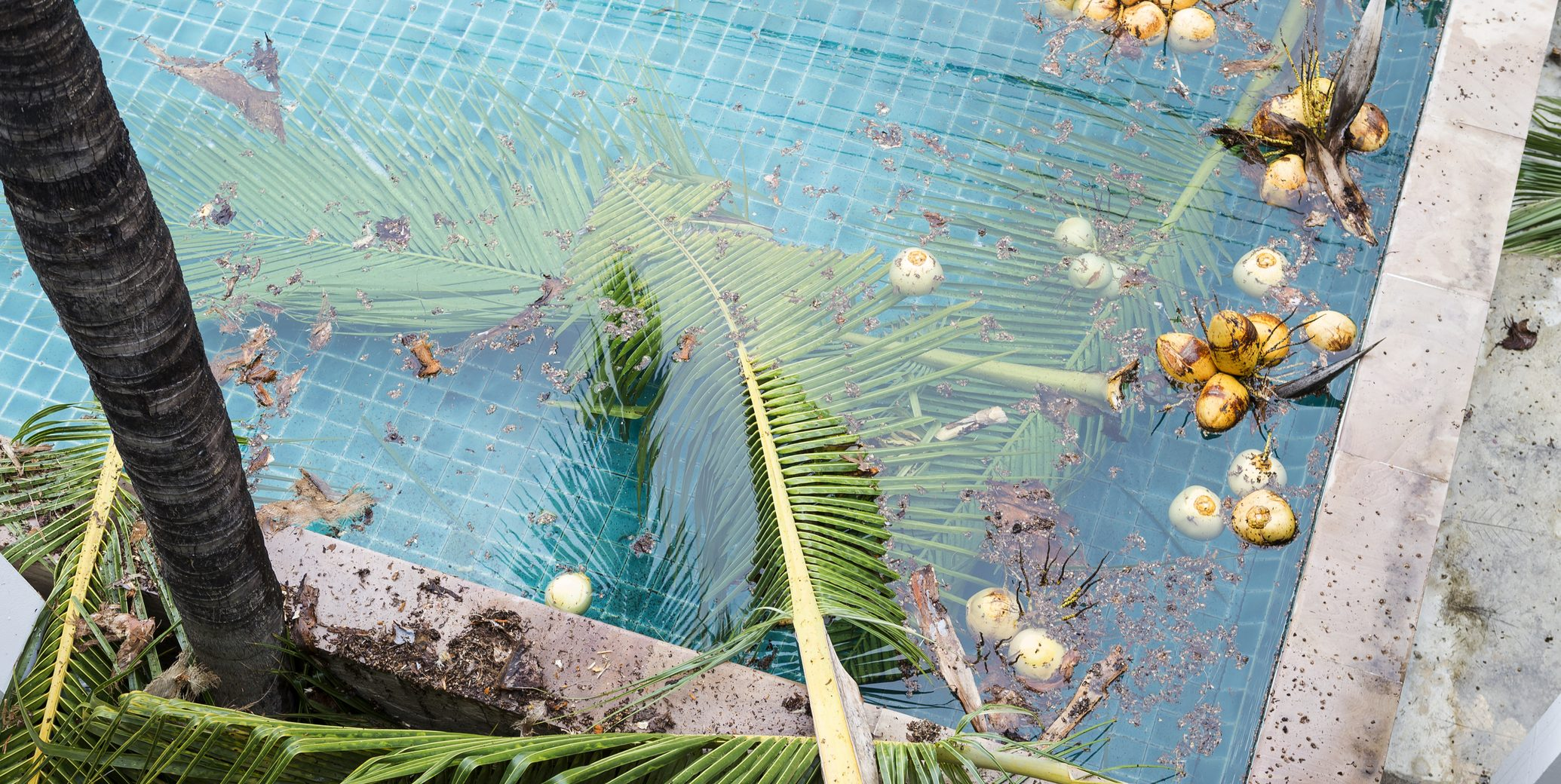How to Clean Your Pool After a Hurricane