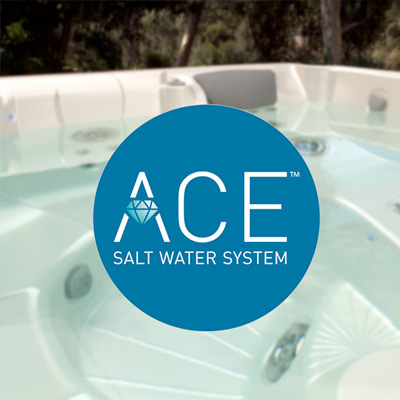 ACE Salt Water Sanitizing System Family Image