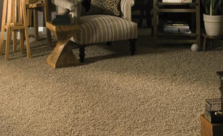 San Diego Carpet Store Residential Amp Commercial Carpet