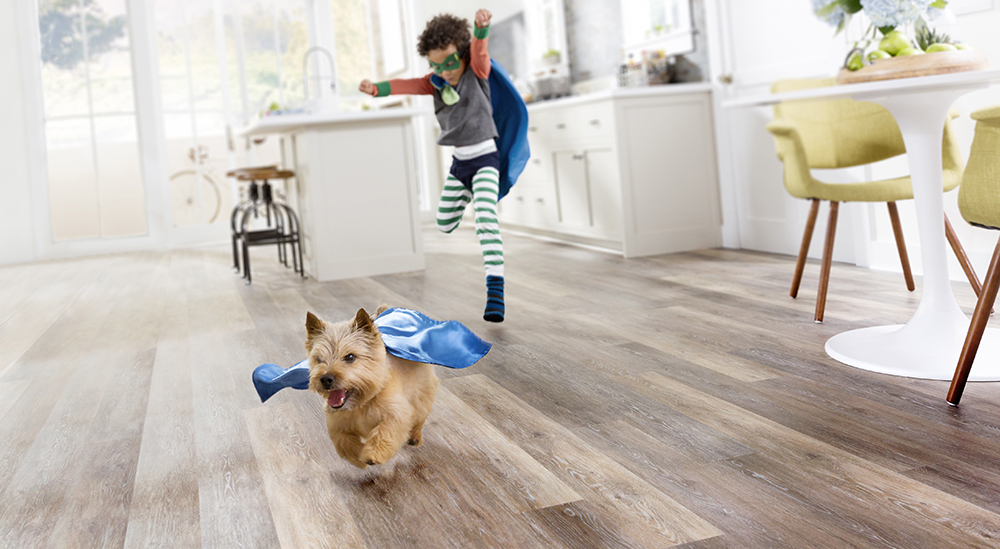 Coles Fine Flooring | StainMaster