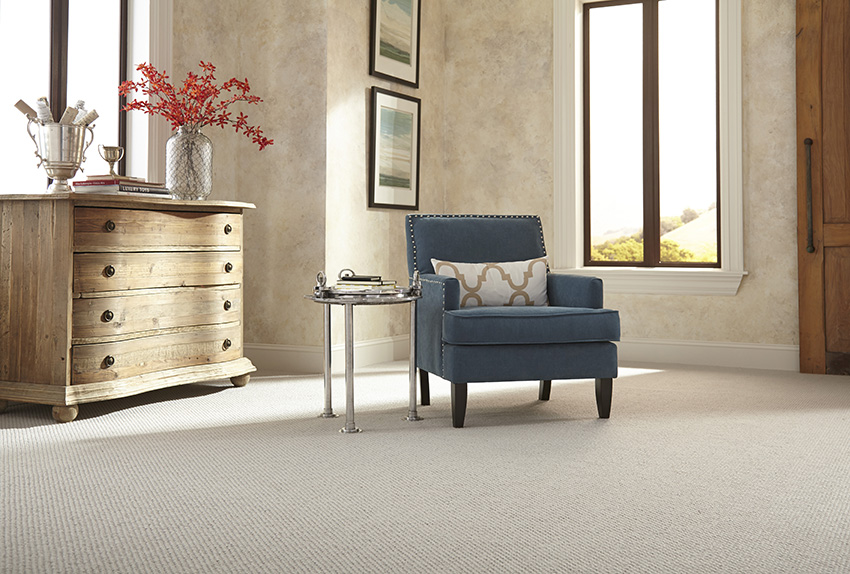 The Benefits Of Wool Carpet For Pet Owners Coles Fine