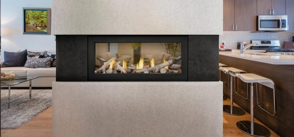 Napoleon Acies 38 See Thru Gas Fireplace