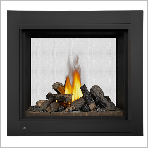 Ascent multi view gas fireplace
