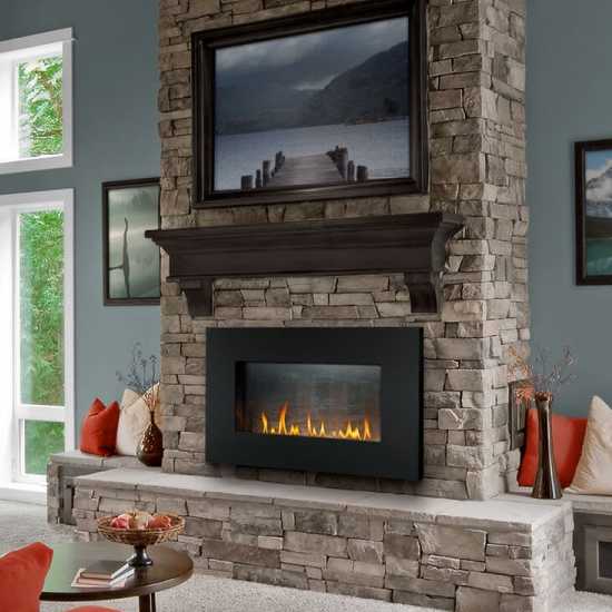 Napoleon Plazmafire 31 Gas Fireplace