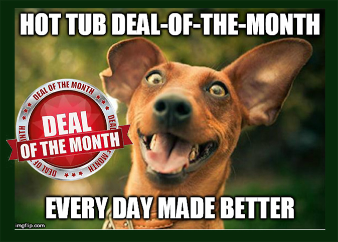 Hot Tub Deal of the Month Aug 2019