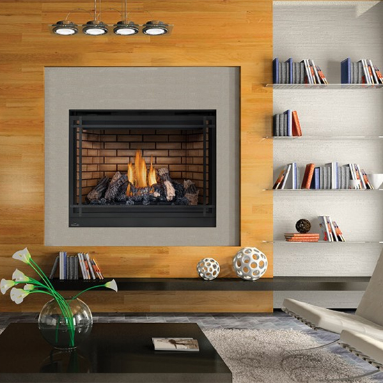 Napoleon High Definition 46 Gas Fireplace