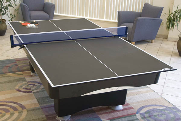Ping Pong Conversion Top Family Image
