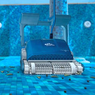Maytronics  Dolphin Pool Robots Family Image