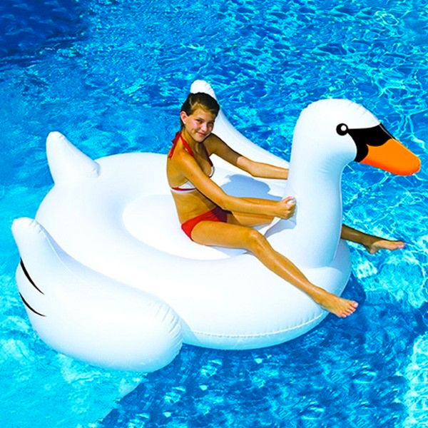 Pool Toys & Floats Family Image