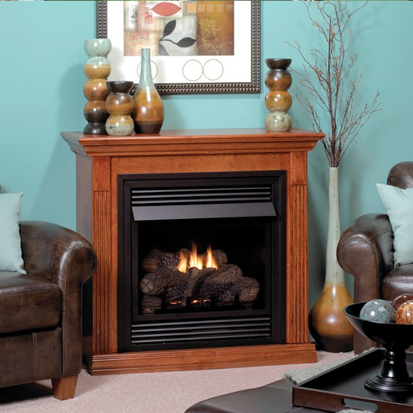 Vent-Free Gas Fireplaces (Decorative) Family Image