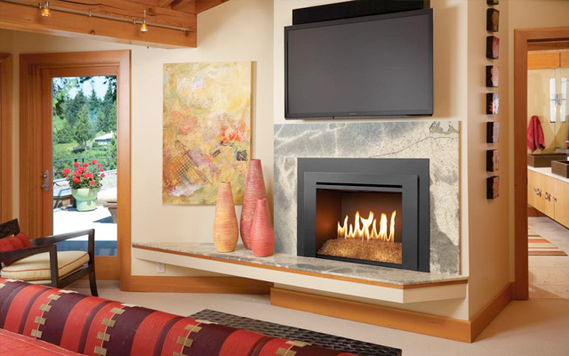 Gas Stoves/ Inserts Family Image