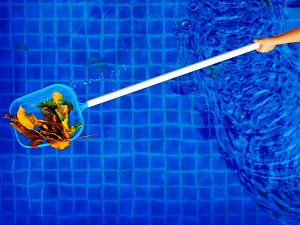 Pool Maintenance  Family Image