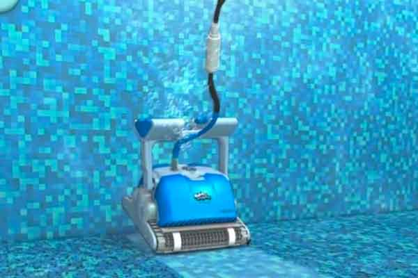 Dolphin Pool Cleaner Family Image