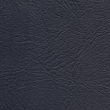 Navy Blue spa cover color option