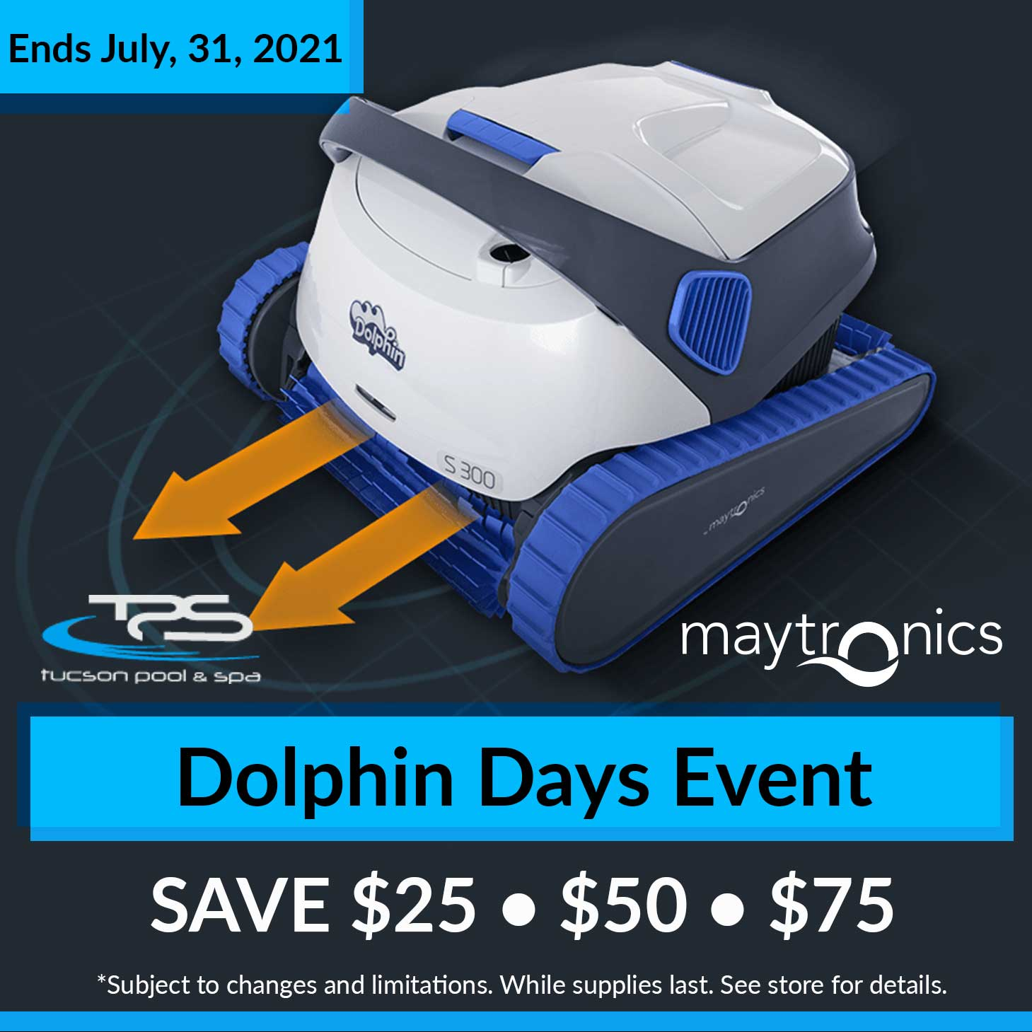 Dolphin Days Event