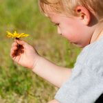 Trey picks some flowers