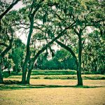fort-mcallister-historic-park-08.jpg