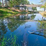 The swinging bridge at Bobby Brown State Park